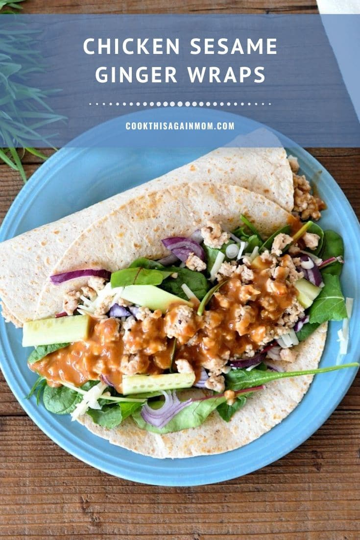a blue plate with a wrap filled with ground chicken, greens, and sesame ginger dressing