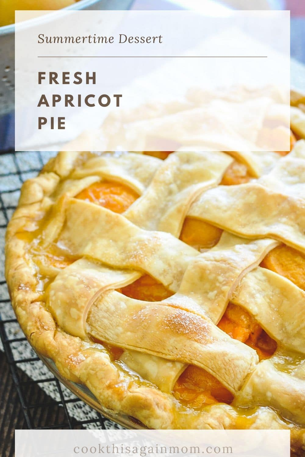 close up photo of homemade apricot pie for pinterest